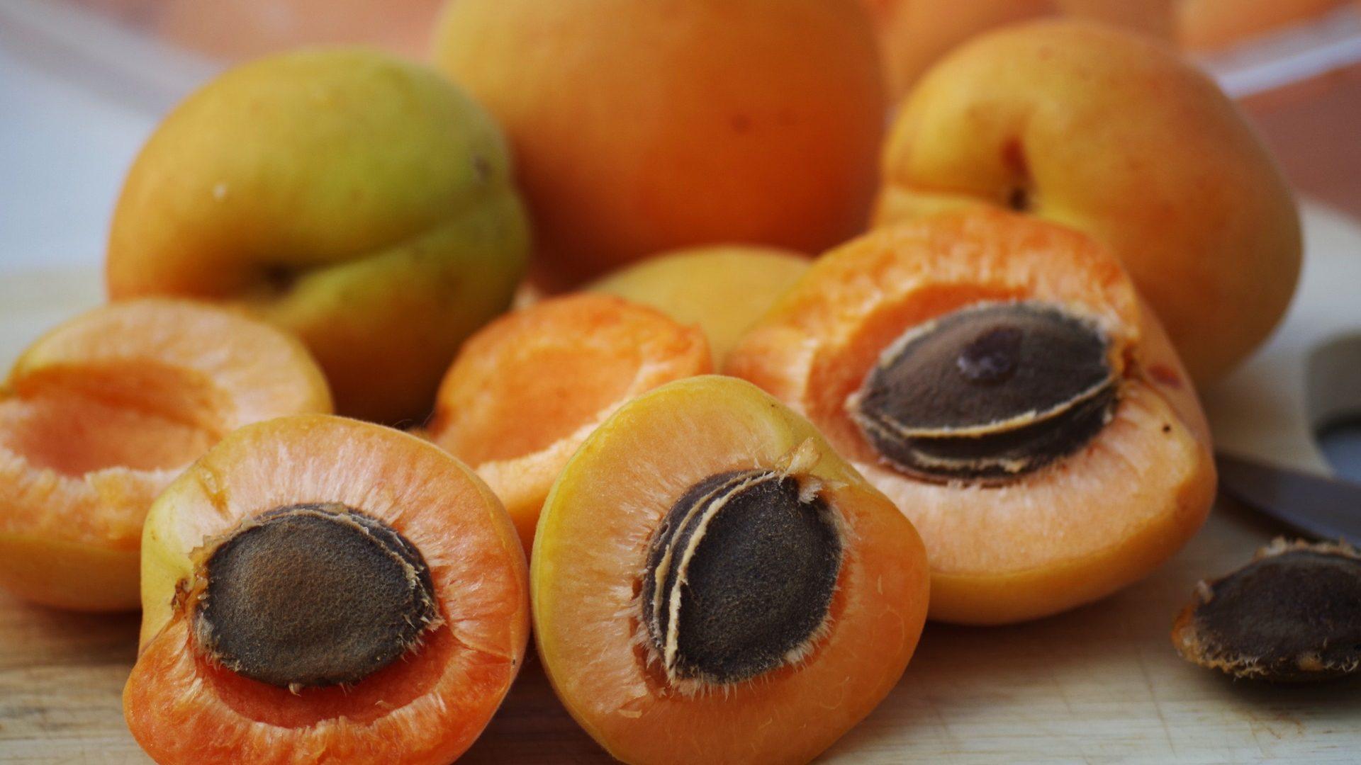 apricots-1502169_1920