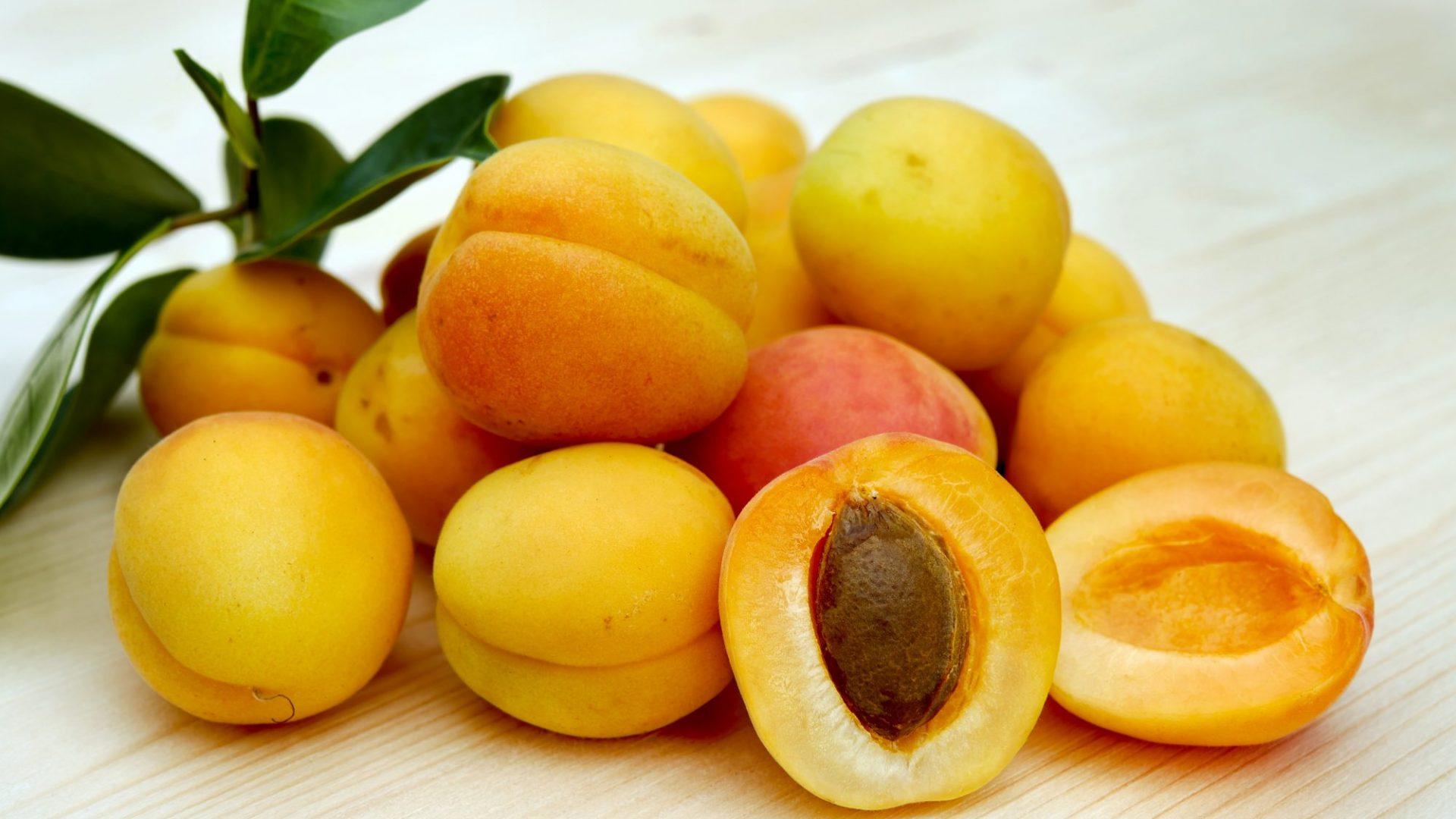 apricots-2523272