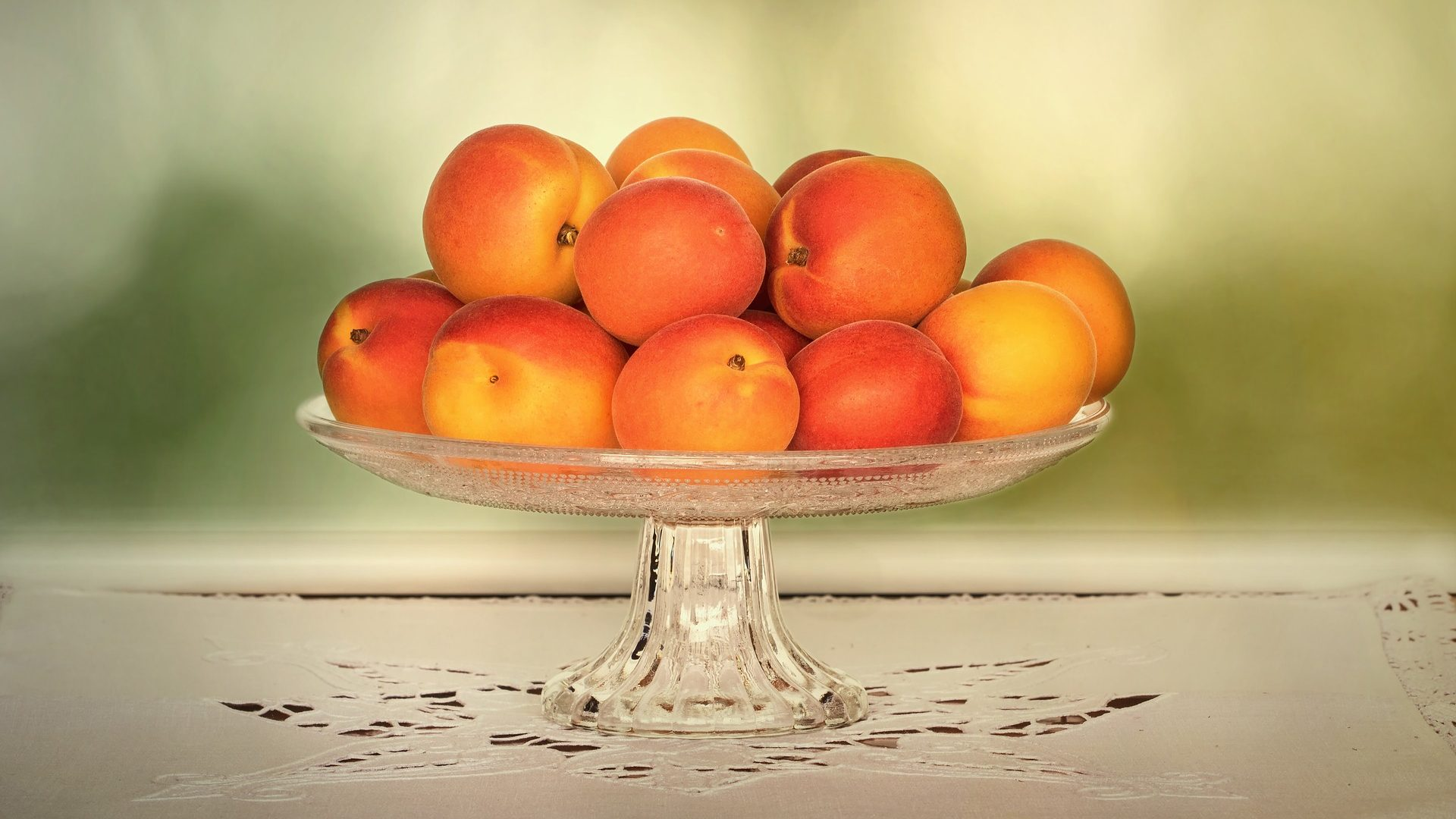 apricts nature-3465118_1920