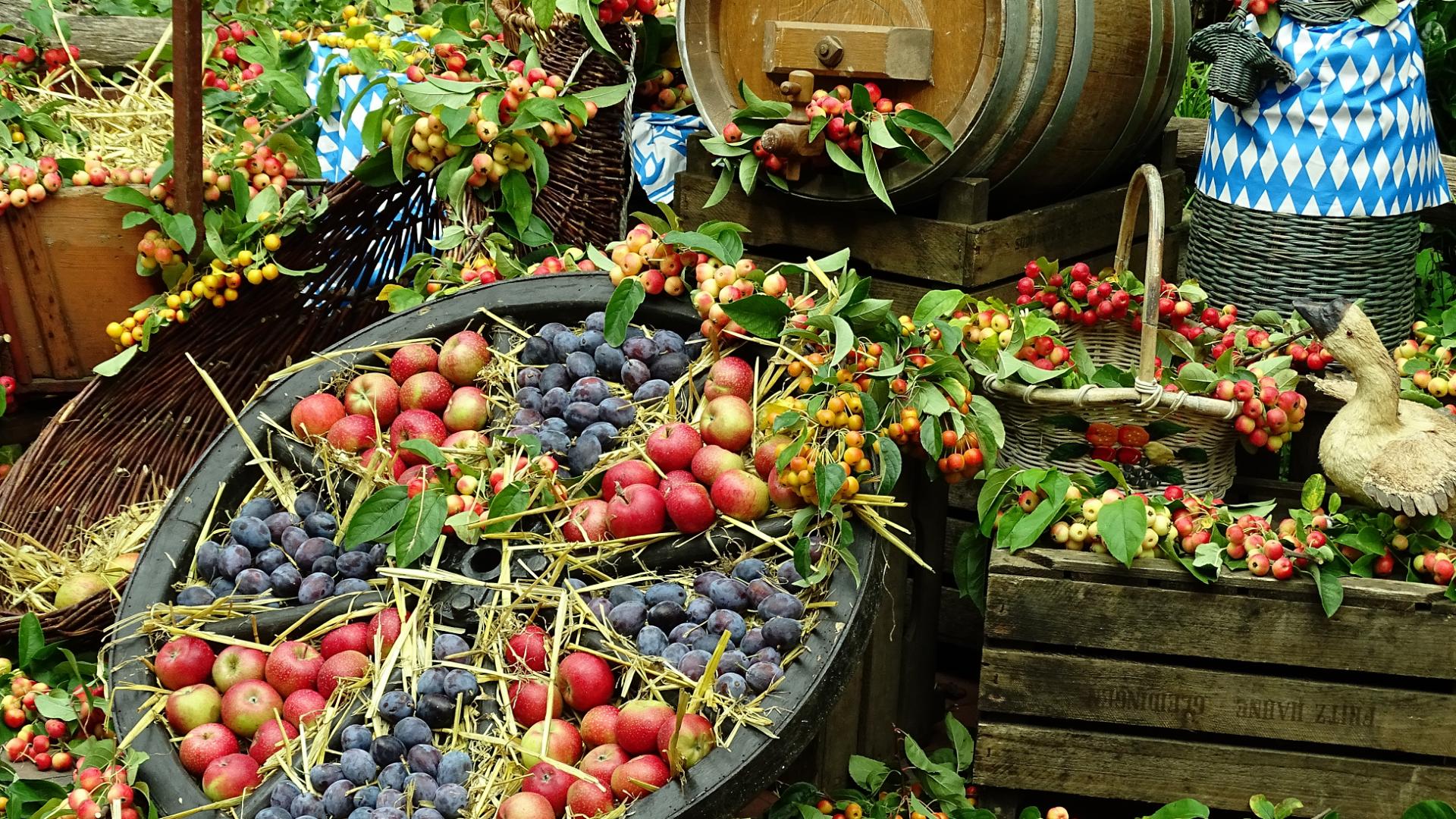 fruits-964165-1950x2
